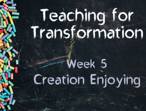 TfT Week 5 – Creation Enjoying