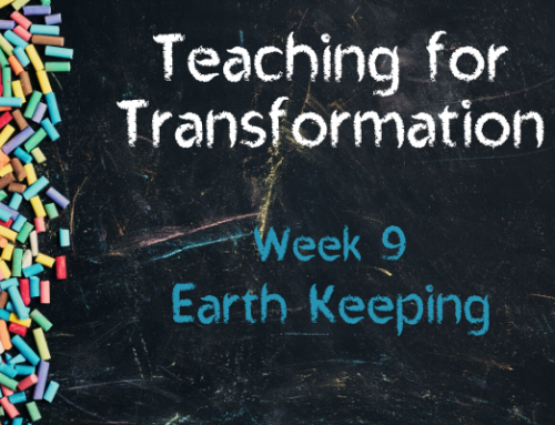 TfT Week 9 – Earth Keeping